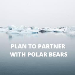 PLAN TO PARTNER WITH POLAR BEARS