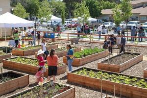 Vallejo PB Community Gardens